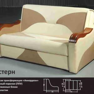 Недорогой диван аккордеон Вестерн