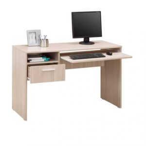 Компьютерный стол Гимназист-5