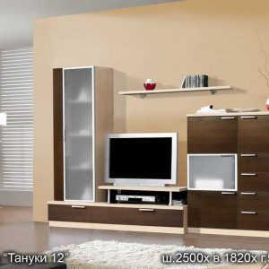 Стенка Тануки-12