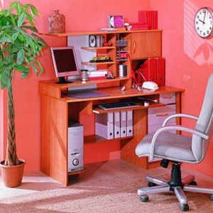 Компьютерный стол №1 (фиеста)