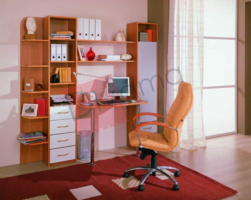 Компьютерный стол №2 (фиеста)