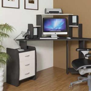 Компьютерный стол Сэн Сэй 2