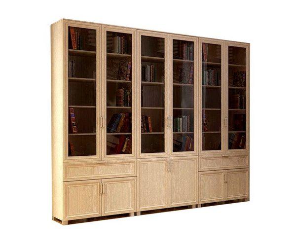 Библиотека Яна-6