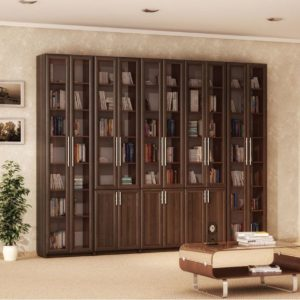 Библиотека Валесия-1