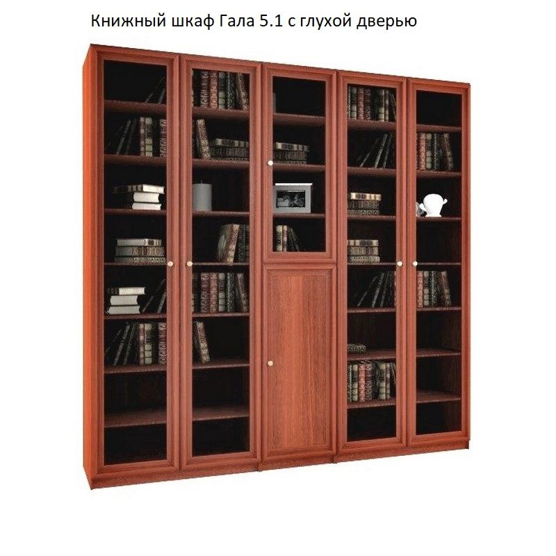 Книжный шкаф Гала 5.1 с глухой дверью