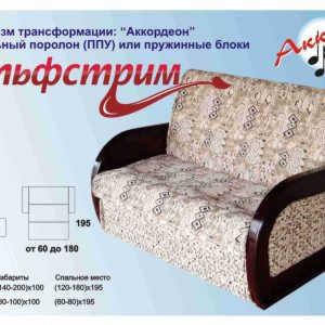Недорогой диван аккордеон Гольфстрим